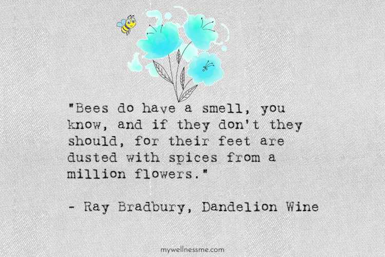 Dandelion Wine quote