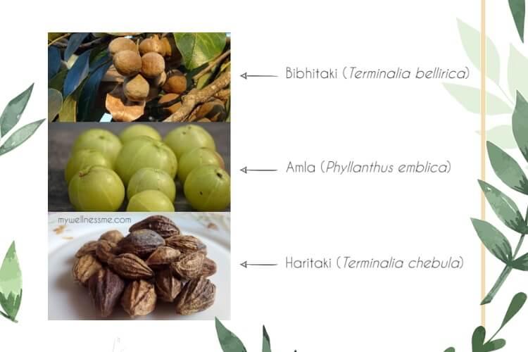 Triphala Ingredients