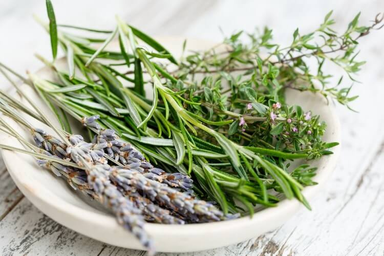Herbs on a white plate
