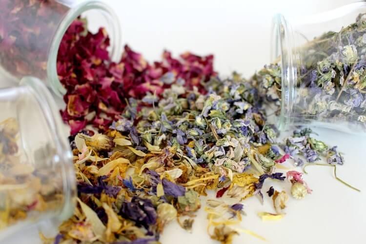 Dry herbs in glass bottles